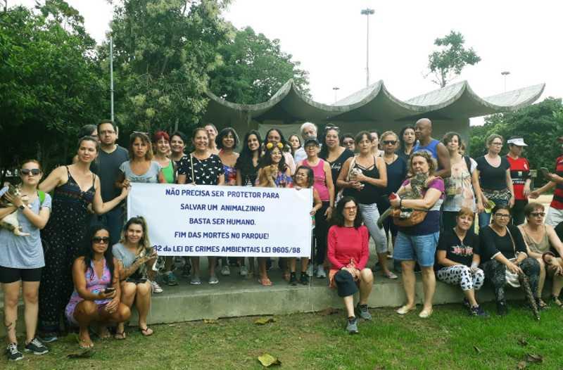 Rio: moradores protestam contra a morte de gatos no Flamengo