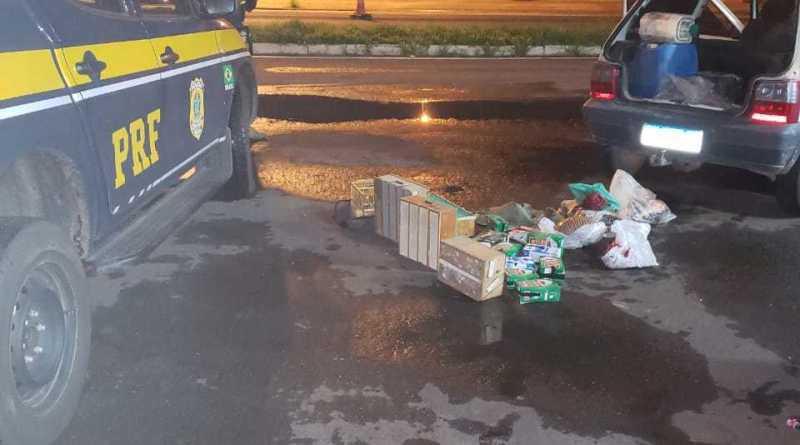 PRF prende homem com quase 100 animais silvestres em Barra do Ribeiro, RS