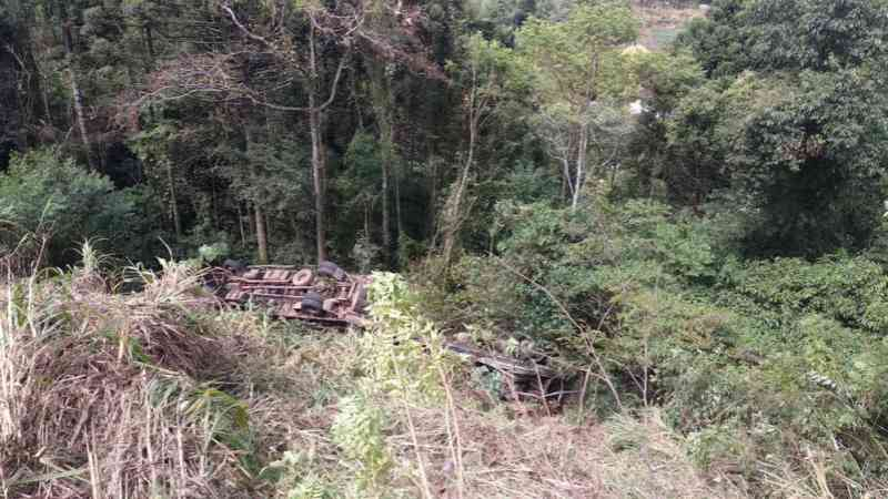Carreta que transportava animais tomba na ERS-122, na Serra do RS