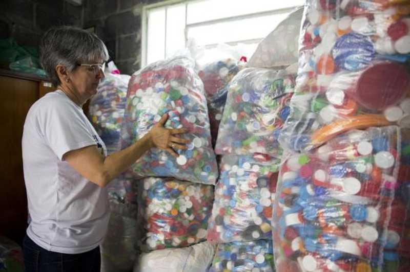 Projeto arrecada cartelas de medicamentos para castrar cães abandonados em Caxias do Sul, RS