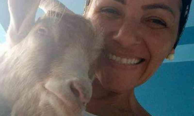 Mulher com câncer adota bode que seria sacrificado após ter invadido casa dela
