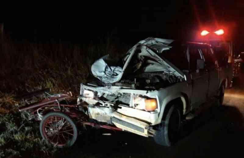 Acidente envolvendo charrete deixa um animal morto em São Carlos, SP