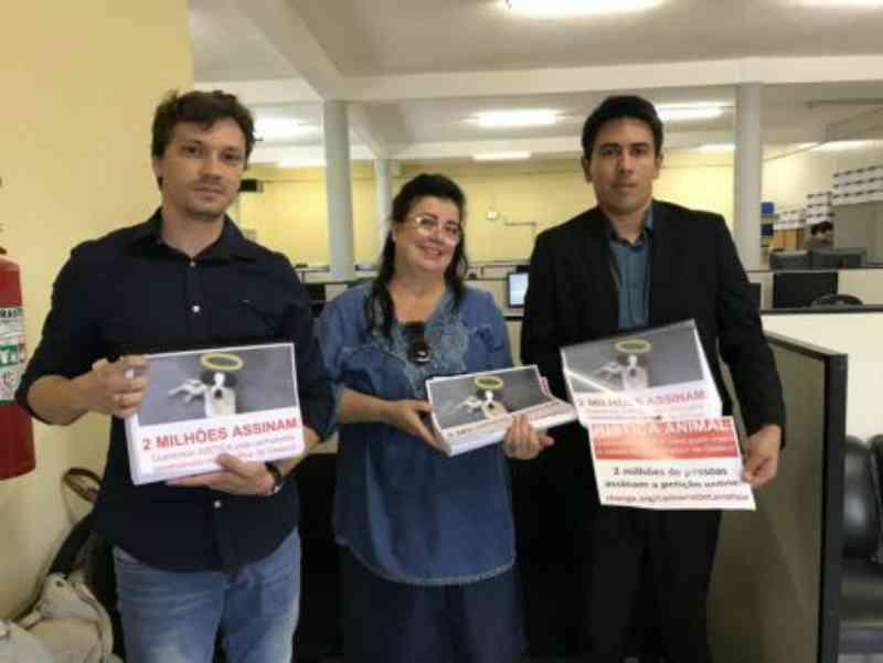 Após petição, MP fecha acordo com Carrefour em prol dos animais