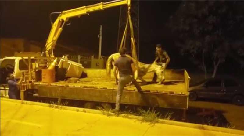 Égua vítima de maus-tratos é resgatada pela SEAMA, mas não resiste e morre em Assis, SP