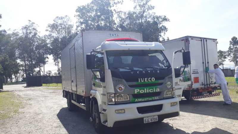 Cetas Barueri (SP) recebe 84 animais após apreensão da Polícia Ambiental