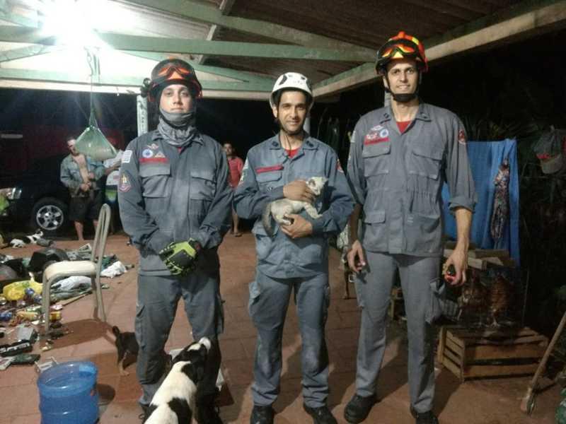 Gato cai em poço de 15 metros de profundidade e mobiliza bombeiros em Bastos, SP