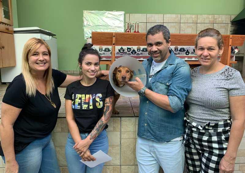 Cachorra resgatada após estupro é adotada em Cabreúva — Foto: Milton Cezar/Arquivo pessoal