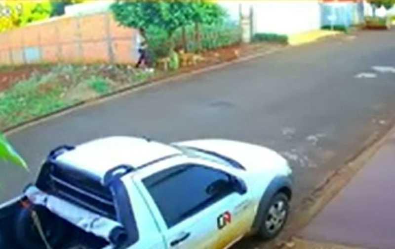 Morador pede punição a suspeito de jogar gato para ser atacado e morto por cães