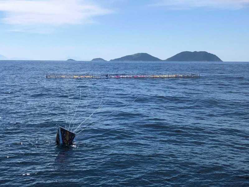Balão gigante cai no mar perto de Ilhabela (SP) e deixa resíduos perigosos para animais e barcos