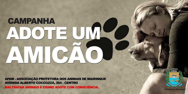Prefeitura da cidade de Mairinque (SP) lança Campanha 'Adote um Amicão'