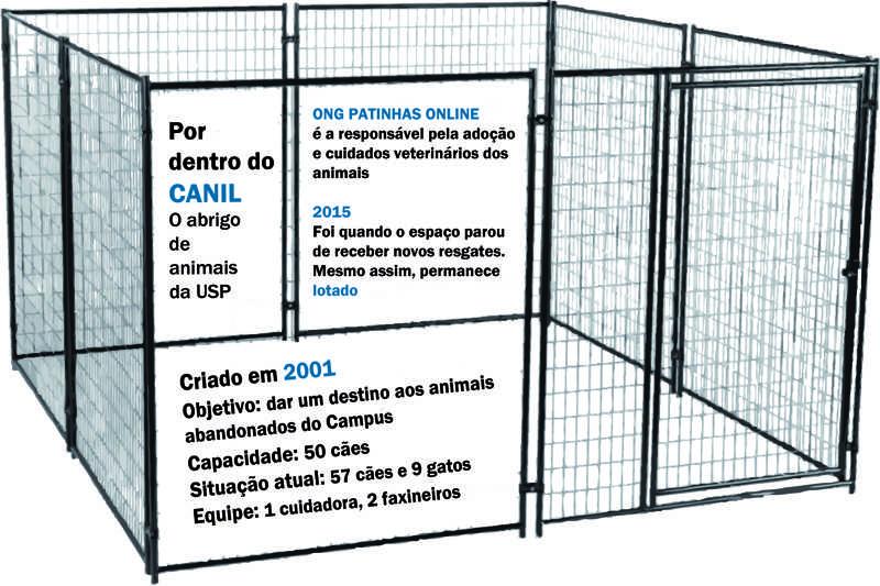 Abrigo de animais da USP é cercado por contradições
