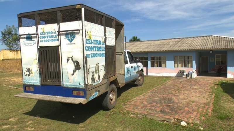 Centro de Zoonoses faz campanha para adoção de animais resgatados em ruas no interior do AC — Foto: Reprodução/Rede Amazônica Acre