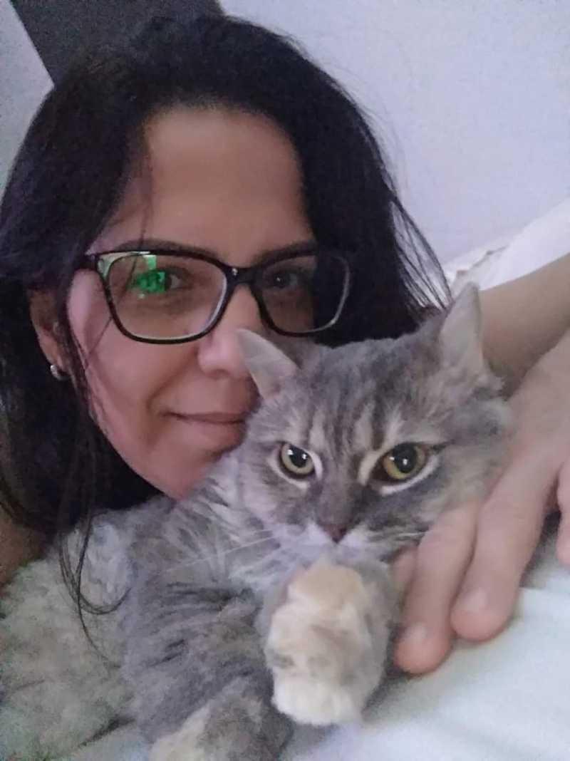Mulher que ganhou ação para criar gata em condomínio diz que recorreu ao STJ 'por todos que gostam de animais'