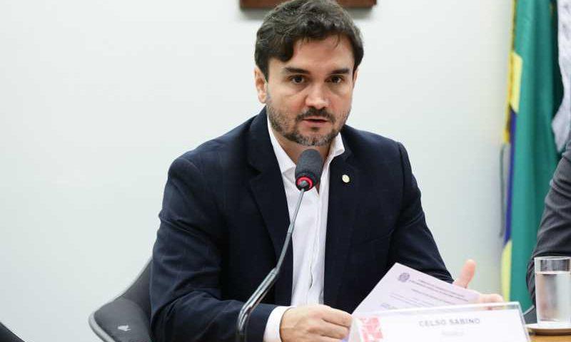 Celso Sabino diz que 15 animais são atropelados por segundo no Brasil - Luis Macedo/Câmara dos Deputados