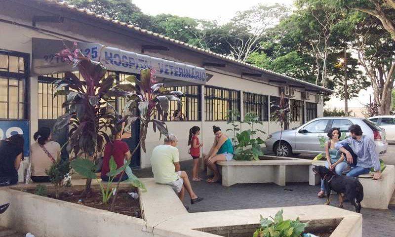 Diretor diz que hospital da UFU é um dos que mais fazem atendimentos no País | Foto: Divulgação