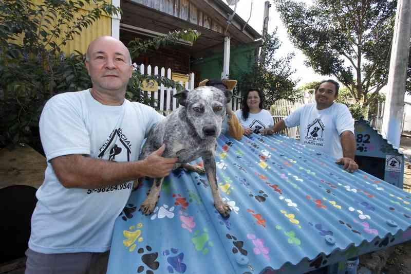 Projeto constrói lares para animais de rua e luta contra o abandono em Porto Alegre, RS