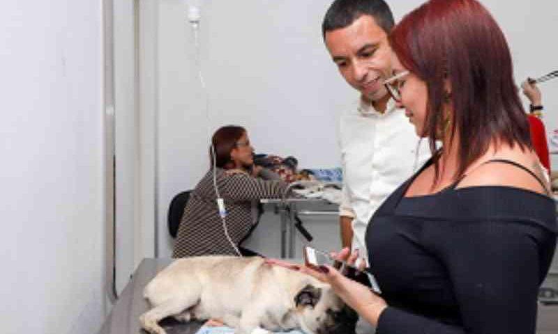 Hospital Veterinário gratuito reduz abandono de animais em Osasco, SP