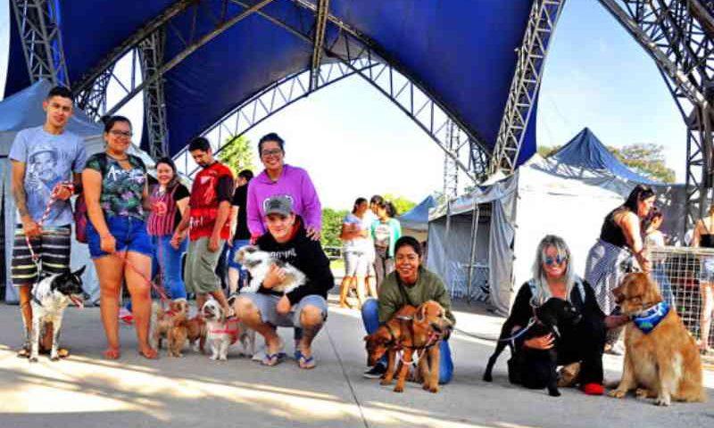 Santo André (SP) chega a marca de mil animais adotados na feira de adoção