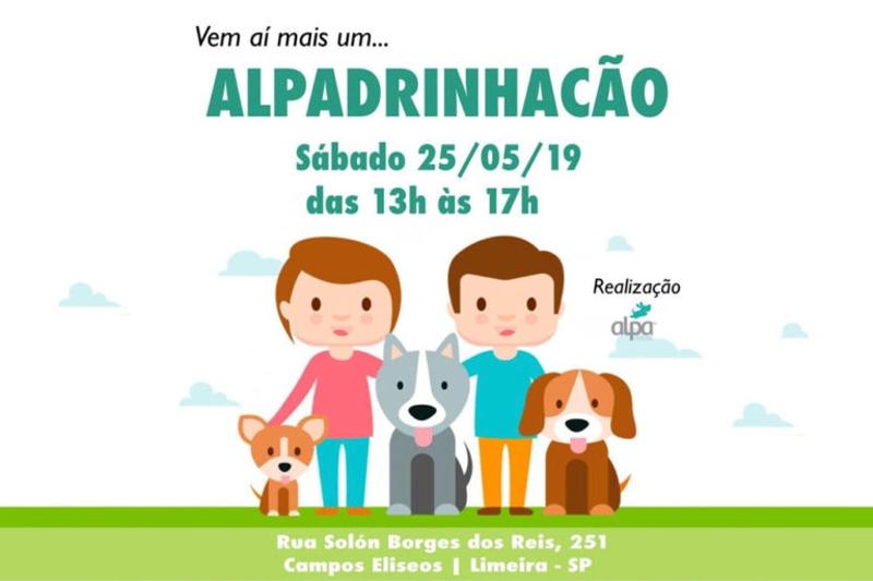 Evento da Alpa leva voluntários a passear com cães sem lar por algumas horas em Limeira, SP