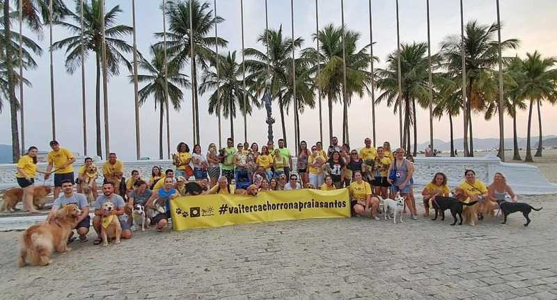 Projeto de lei quer a liberação de uma área delimitada da praia de Santos, SP, para a presença de cachorros — Foto: Arquivo pessoal/Vai ter cachorro na praia