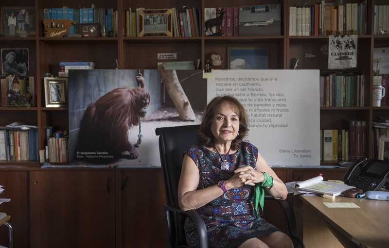 A juíza argentina Elena Liberatori, em seu gabinete. MARIANA ELIANO