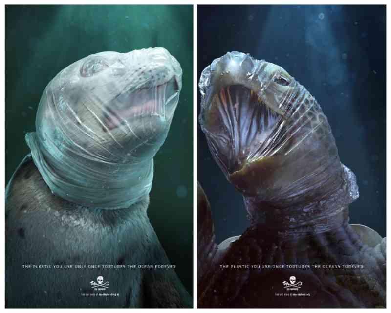 Campanha sobre animais asfixiados com plásticos no mar será exposta em Cannes