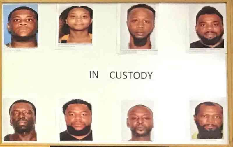 Oito acusados e cem cães capturados em enorme ringue de rinhas e drogas na Flórida