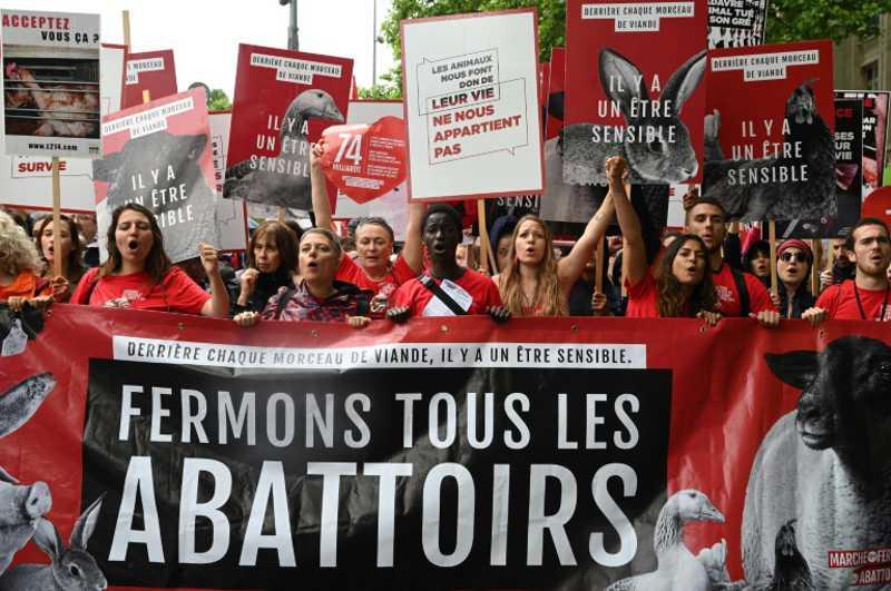 Defensores de animais e ativistas veganos marcham nas ruas de Paris em 8 de junho de 2019, após a convocação da associação anti-carne L214 - AFP