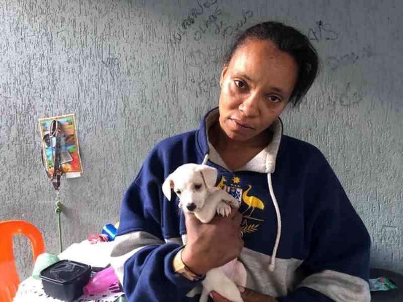 Animal morre em BH, e tutora culpa vizinho: dizia não gostar de 'preto, morador de rua e cachorro'