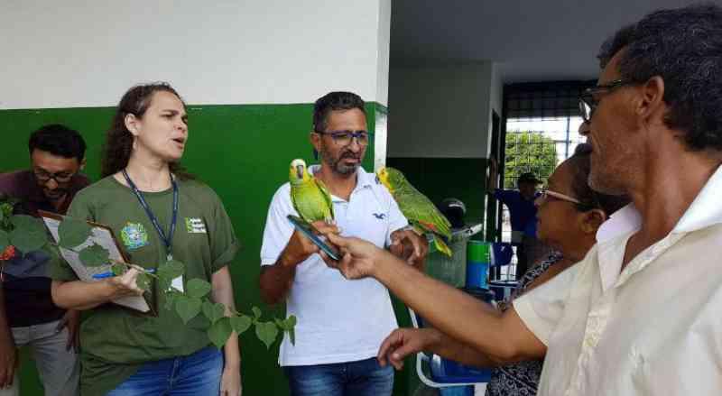 CPRH recebe 73 animais silvestres entregues voluntariamente em Recife, PE