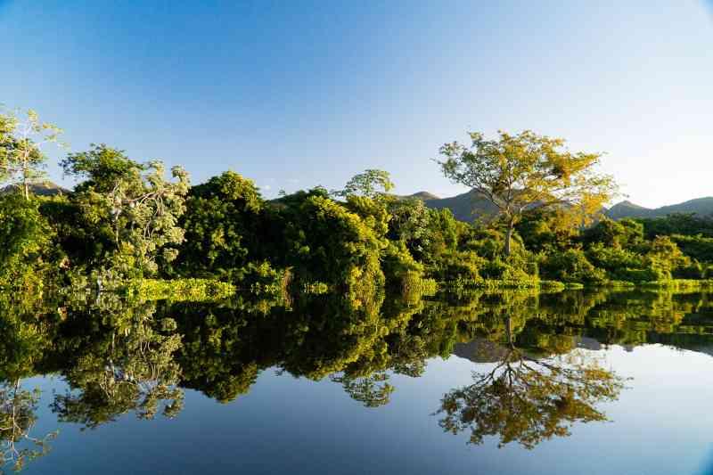 Pantanal tem um fiscal a cada 204 km² para combater a caça, a pesca ilegal e outros crimes ambientais
