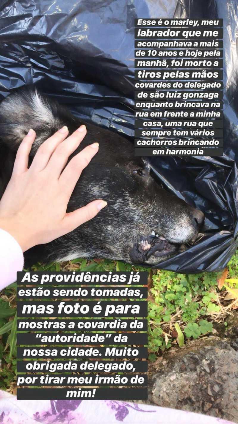 Katyusse, tutora do Marley, fez uma postagem com desabafo após a morte do cão — Foto: Katyusse Gabert/Arquivo pessoal