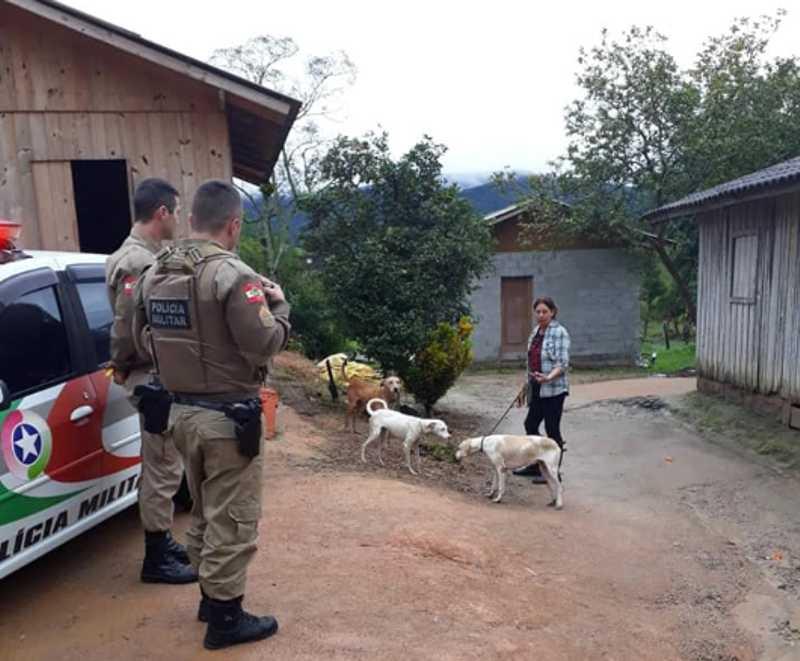 Três cachorros são resgatados vítimas de maus-tratos em Garopaba, SC