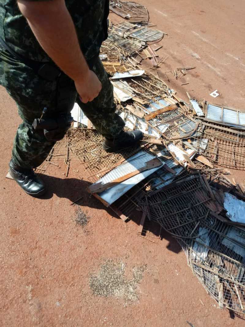 Polícia Ambiental de Botucatu (SP) destrói gaiolas apreendidas
