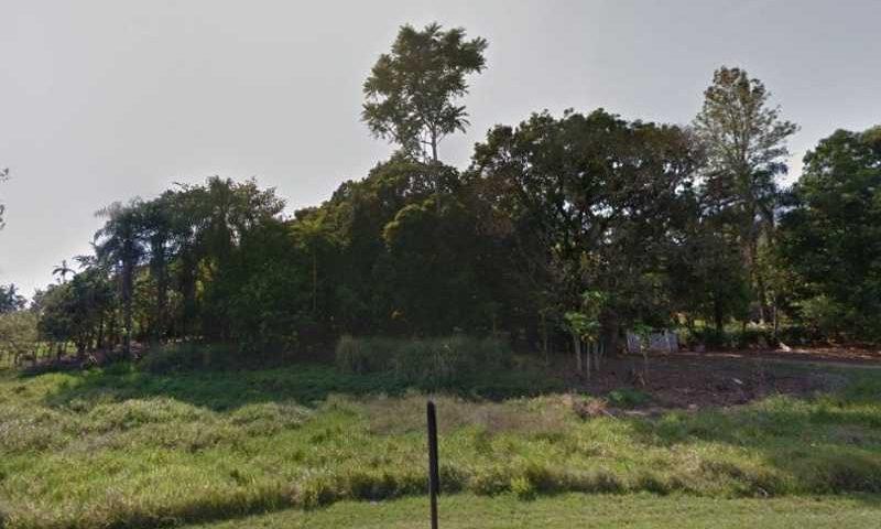 Região de mata na área rural da Vila das Garças, em Campinas (Foto: Google Street View)