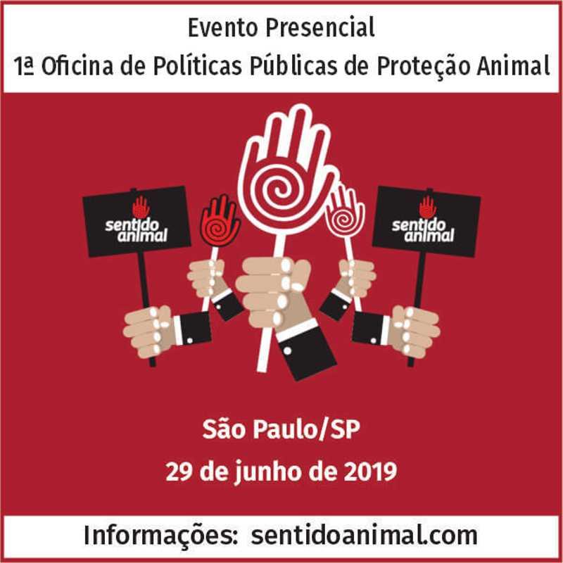 1ª Oficina de Políticas Públicas de Proteção Animal, em SP