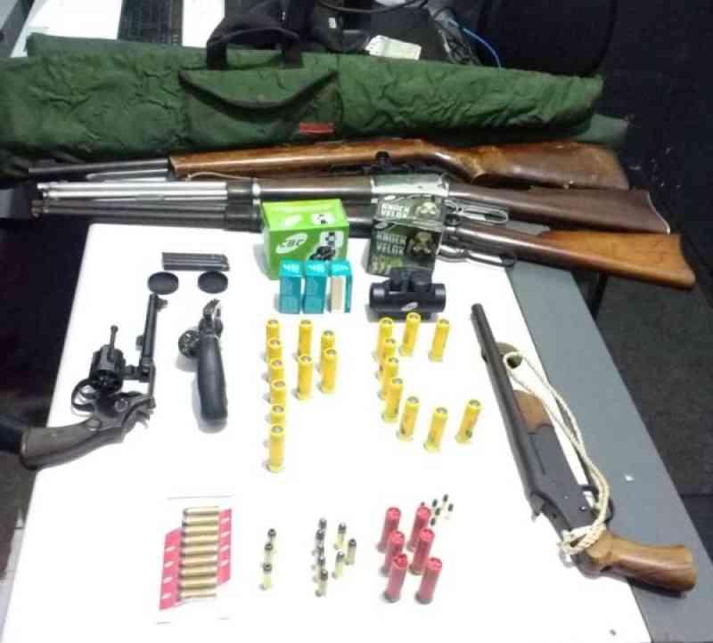 Polícia encontra seis armas e mais de 200 munições com pai e filho ao investigar morte de jumento a tiros