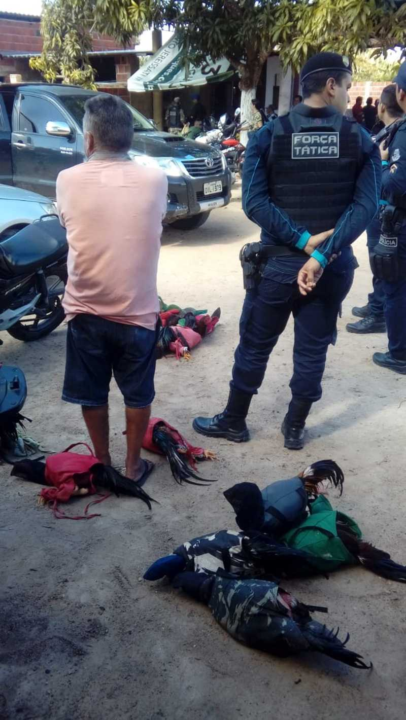 Cerca de 20 policiais militares participaram da ocorrência em Pacatuba. — Foto: Divulgação/PM