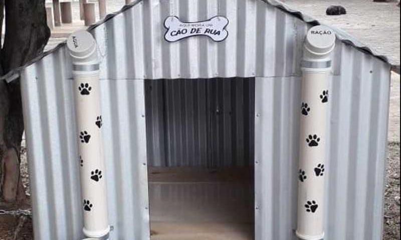 Homem constrói casinha para cães de rua se abrigarem no frio em Guaçuí, ES