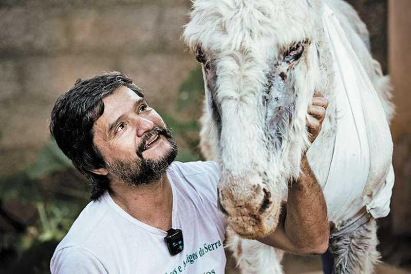 """Para o veterinário Marcos Mourão, a compensação ao trabalho árduo realizado em prol dos animais deficientes é uma só: """"Dar uma nova chance àqueles que já estavam condenados ao descaso e à morte"""" (foto: ONG Asas e Amigos/Divulgação)"""