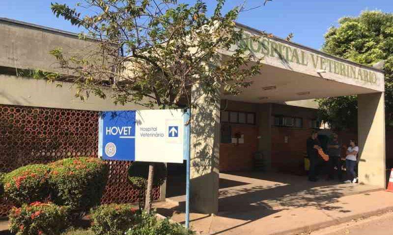 Com corte de energia, Hospital Veterinário da UFMT é esvaziado e tutores buscam animais