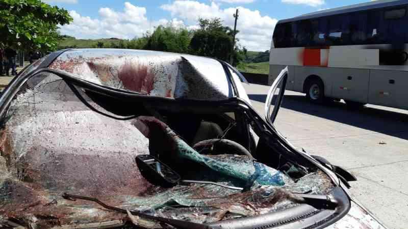 Cavalo morre após ser atropelado por dois carros na BR-232