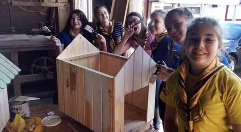 Escoteiros auxiliam ADAC na construção de casinhas para cachorros em Chopinzinho, PR