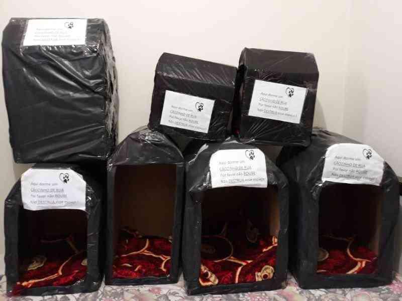 Casal monta casinhas de papelão para abrigar cães de rua no frio em Paiçandu, PR
