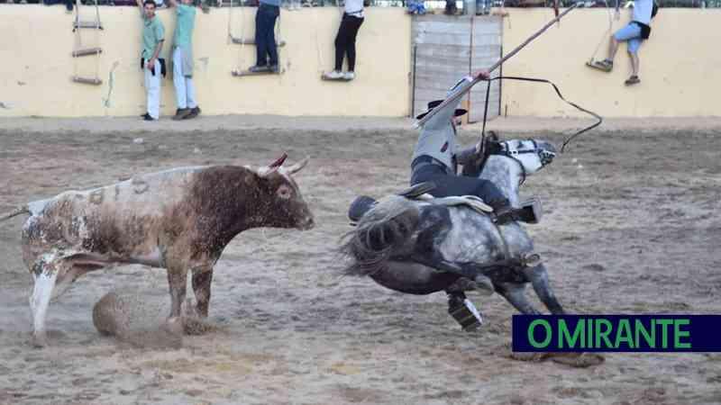 Portugal: cavalo atingido por touro nas corridas de Vila Franca de Xira morreu de hemorragias