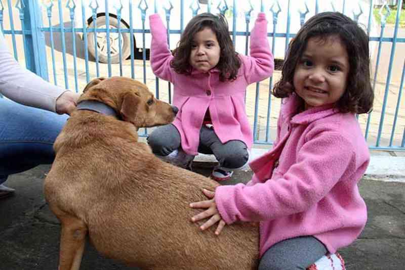 Visita aos cães adotados do Canil Municipal de Esteio, RS