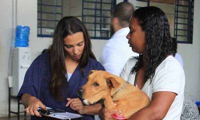 Proposta abrange incentivo a pessoas físicas e jurídicas. (Foto: Divulgação/UFMG)