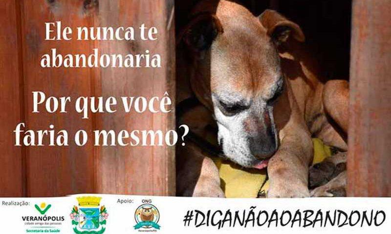 Veranópolis (RS) lança campanha contra o abandono de animais