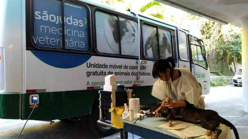 Castramóvel de Santos (SP) realiza duas mil castrações no primeiro semestre