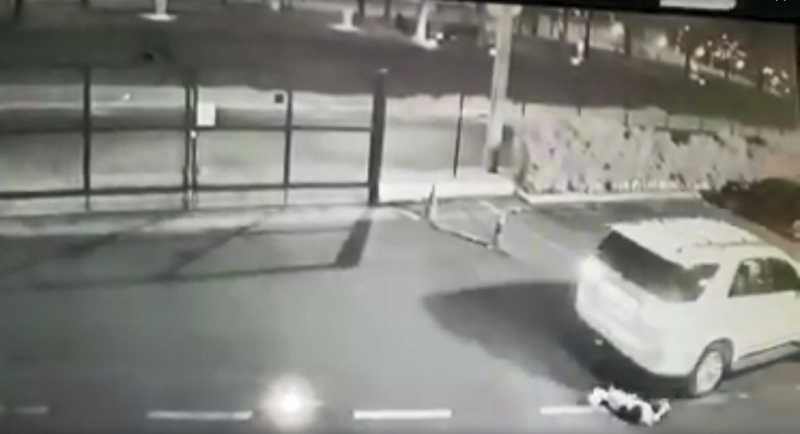 Cadela não resistiu aos ferimentos e morreu — Foto: Reprodução/Circuito de segurança